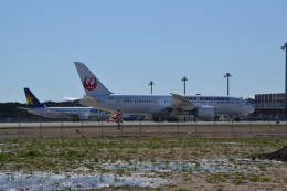 ヨッちゃんさんが、茨城空港で撮影した日本航空 787-8 Dreamlinerの航空フォト(飛行機 写真・画像)