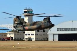 sepia2016さんが、霞ヶ浦飛行場で撮影した陸上自衛隊 CH-47Jの航空フォト(飛行機 写真・画像)