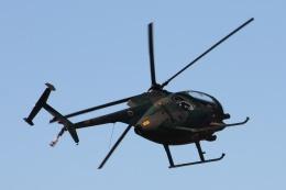 にまっくさんが、木更津飛行場で撮影した陸上自衛隊 OH-6Dの航空フォト(飛行機 写真・画像)