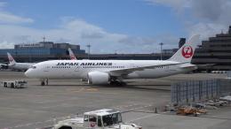 AE31Xさんが、成田国際空港で撮影した日本航空 787-8 Dreamlinerの航空フォト(飛行機 写真・画像)