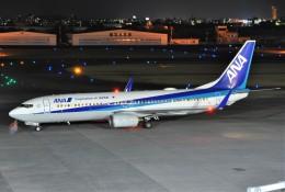 Y.Mayumi_B767さんが、宮崎空港で撮影した全日空 737-881の航空フォト(飛行機 写真・画像)