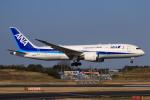 やつはしさんが、成田国際空港で撮影した全日空 787-8 Dreamlinerの航空フォト(飛行機 写真・画像)
