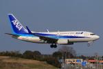 やつはしさんが、成田国際空港で撮影した全日空 737-781の航空フォト(飛行機 写真・画像)