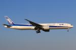 やつはしさんが、成田国際空港で撮影した全日空 777-381/ERの航空フォト(飛行機 写真・画像)