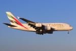 やつはしさんが、成田国際空港で撮影したエミレーツ航空 A380-861の航空フォト(飛行機 写真・画像)