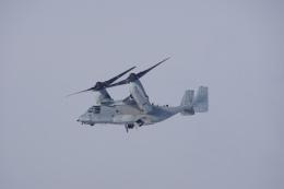 神宮寺ももさんが、千歳基地で撮影したアメリカ海兵隊 MV-22Bの航空フォト(飛行機 写真・画像)