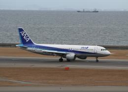 銀苺さんが、中部国際空港で撮影した全日空 A320-211の航空フォト(飛行機 写真・画像)