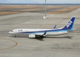 銀苺さんが、中部国際空港で撮影した全日空 737-881の航空フォト(飛行機 写真・画像)