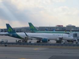 くろぼしさんが、ジョン・F・ケネディ国際空港で撮影したエア・リンガス A321-253NXの航空フォト(飛行機 写真・画像)