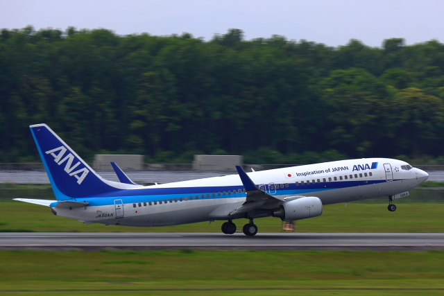 こだしさんが、熊本空港で撮影した全日空 737-881の航空フォト(飛行機 写真・画像)