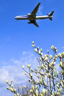 くれないさんが、高松空港で撮影した全日空 767-381/ERの航空フォト(飛行機 写真・画像)