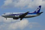板付蒲鉾さんが、福岡空港で撮影したANAウイングス 737-54Kの航空フォト(飛行機 写真・画像)