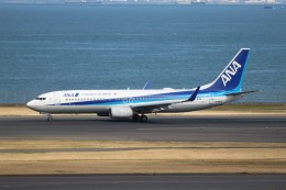 航空研究家さんが、羽田空港で撮影した全日空 737-881の航空フォト(飛行機 写真・画像)