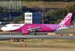 あしゅーさんが、福岡空港で撮影したピーチ A320-214の航空フォト(飛行機 写真・画像)