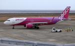 奄美空港 - Amami Airport [ASJ/RJKA]で撮影されたピーチ - Peach [MM/APJ]の航空機写真