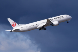 TOPAZ102さんが、伊丹空港で撮影した日本航空 787-9の航空フォト(飛行機 写真・画像)