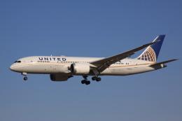 けいとパパさんが、成田国際空港で撮影したユナイテッド航空 787-8 Dreamlinerの航空フォト(飛行機 写真・画像)