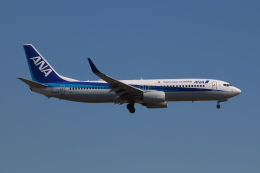 SIさんが、福岡空港で撮影した全日空 737-881の航空フォト(飛行機 写真・画像)