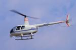 yabyanさんが、名古屋飛行場で撮影したディーエイチシー R44 Raven II Newscopterの航空フォト(飛行機 写真・画像)