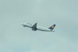 やまそらさんが、レオナルド・ダ・ヴィンチ国際空港で撮影したルフトハンザドイツ航空 A320-271Nの航空フォト(飛行機 写真・画像)