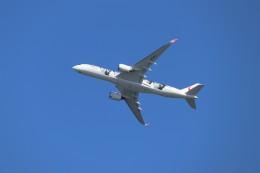 やまそらさんが、羽田空港で撮影した日本航空 A350-941の航空フォト(飛行機 写真・画像)