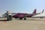 kumagorouさんが、関西国際空港で撮影したピーチ A320-214の航空フォト(飛行機 写真・画像)