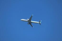 やまそらさんが、羽田空港で撮影した全日空 A321-272Nの航空フォト(飛行機 写真・画像)