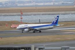 TAK_HND_NRTさんが、羽田空港で撮影した全日空 A320-211の航空フォト(飛行機 写真・画像)