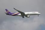 OMAさんが、シンガポール・チャンギ国際空港で撮影したタイ国際航空 A350-941XWBの航空フォト(飛行機 写真・画像)