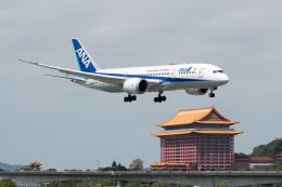 ぎんじろーさんが、台北松山空港で撮影した全日空 787-8 Dreamlinerの航空フォト(飛行機 写真・画像)