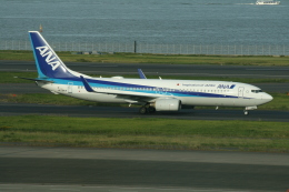 武田菱さんが、羽田空港で撮影した全日空 737-881の航空フォト(飛行機 写真・画像)