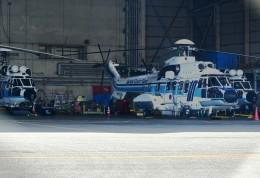 M.Ochiaiさんが、羽田空港で撮影した海上保安庁 AS332L1 Super Pumaの航空フォト(飛行機 写真・画像)