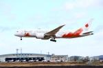 ぼのさんが、松島基地で撮影した日本航空 787-8 Dreamlinerの航空フォト(飛行機 写真・画像)