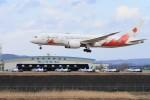 HNANA787さんが、松島基地で撮影した日本航空 787-8 Dreamlinerの航空フォト(飛行機 写真・画像)