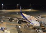 銀苺さんが、羽田空港で撮影した全日空 747-481(D)の航空フォト(飛行機 写真・画像)