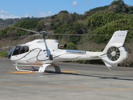 ランチパッドさんが、静岡ヘリポートで撮影したユーロヘリ EC130B4の航空フォト(飛行機 写真・画像)