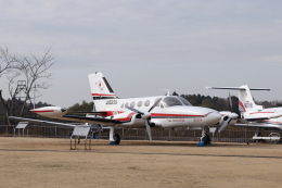 KAZFLYERさんが、成田国際空港で撮影した毎日新聞社 421B Golden Eagleの航空フォト(飛行機 写真・画像)