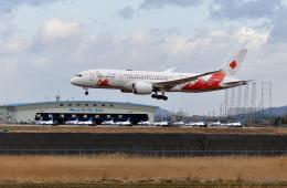 ひこ☆さんが、松島基地で撮影した日本航空 787-8 Dreamlinerの航空フォト(飛行機 写真・画像)