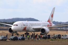 やまけんさんが、松島基地で撮影した日本航空 787-8 Dreamlinerの航空フォト(飛行機 写真・画像)