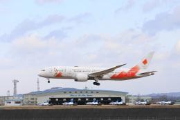 garrettさんが、松島基地で撮影した日本航空 787-8 Dreamlinerの航空フォト(飛行機 写真・画像)