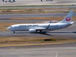 hirohirokinさんが、羽田空港で撮影した日本航空 737-846の航空フォト(飛行機 写真・画像)
