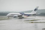 delawakaさんが、クアラルンプール国際空港で撮影したマレーシア航空 A380-841の航空フォト(飛行機 写真・画像)