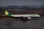 delawakaさんが、仙台空港で撮影したエバー航空 A330-302の航空フォト(飛行機 写真・画像)
