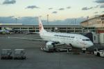 delawakaさんが、那覇空港で撮影した日本トランスオーシャン航空 737-8Q3の航空フォト(飛行機 写真・画像)