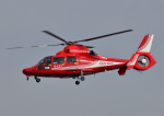 じーく。さんが、八尾空港で撮影した大阪市消防航空隊 AS365N3 Dauphin 2の航空フォト(飛行機 写真・画像)