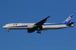 AkilaYさんが、成田国際空港で撮影した全日空 777-381/ERの航空フォト(飛行機 写真・画像)