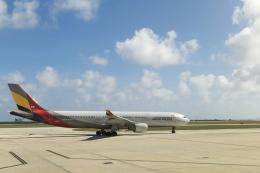 サイパンだ!さんが、サイパン国際空港で撮影したアシアナ航空 A330-323Xの航空フォト(飛行機 写真・画像)