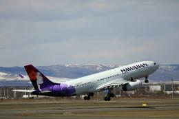 モモさんが、新千歳空港で撮影したハワイアン航空 A330-243の航空フォト(飛行機 写真・画像)