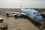 yousei-pixyさんが、ダニエル・K・イノウエ国際空港で撮影した全日空 A380-841の航空フォト(飛行機 写真・画像)