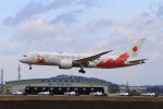 ふるちゃんさんが、松島基地で撮影した日本航空 787-8 Dreamlinerの航空フォト(飛行機 写真・画像)